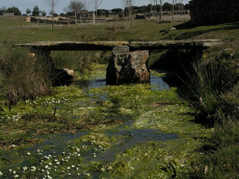 Parajes: El Chorrete #1