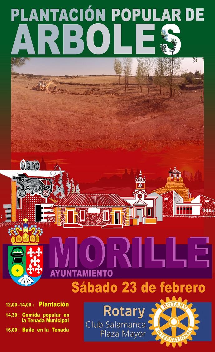 Plantación de árboles en Morille